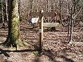 Signpost - geograph.org.uk - 147981.jpg
