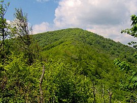 Silers-bald-from-narrows1.jpg