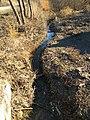 Small river in Subotivka 2.jpg