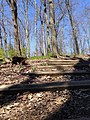 Smith Nature Park and Slyh Run (26466949575).jpg