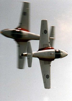 Snowbirds - Snowbird solos performing head on cross manoeuver at National Capital Air Show, Ottawa, 1994