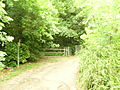 Southern entry to Stambourne Woodland Walk, Crystal Palace.JPG
