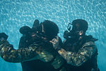 Special Forces Soldiers conduct scuba recertification 150120-A-KJ310-009.jpg