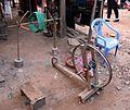 Spinner's weasel Laos.jpg
