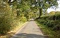 Spot the pheasant - geograph.org.uk - 1538053.jpg