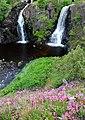 Stalpet Waterfall - panoramio.jpg