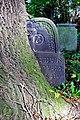Stary cmentarz żydowski w Cieszynie28.JPG
