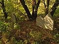 Stary cmentarz żydowski w Lublinie macewy1.jpg