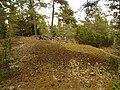 Stensättning Skön 62 Sundsvall 06.jpg