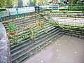 Steps - geograph.org.uk - 1038541.jpg