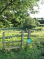 Stile into cattle pasture - geograph.org.uk - 1422636.jpg