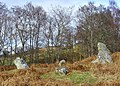 Stone circle near the A 839 - geograph.org.uk - 703990.jpg