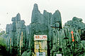 Stone forest 1983-26.jpg