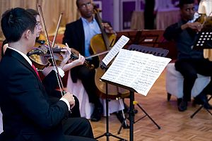 Quartet - A string quartet in performance. From left to right - violin 1, violin 2, cello, viola
