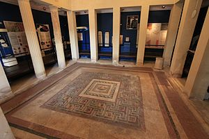 Domvs Romana - The mosaic of the peristyle