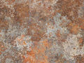 Surface Texture 006.jpg