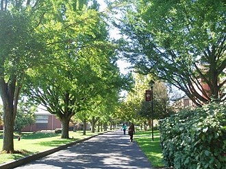 Susquehanna University - The Path at Susquehanna University.