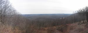 Susquehannock State Forest - Image: Susquehannock State Forest panorama