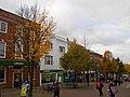 Sutton High Street trees (6).jpg