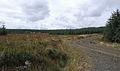 Swine Cleugh - geograph.org.uk - 563995.jpg