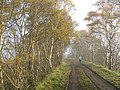 Symington, Biggar and Broughton Railway - geograph.org.uk - 1031132.jpg