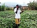 TIC et agriculture.jpg