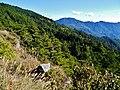 Taiwan Central Cross Island Highway 26.jpg