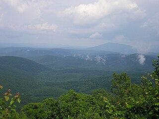 Ozark Mountain forests Ecoregion (WWF)