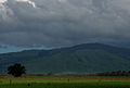 Tararua hills - Manawatu.jpg