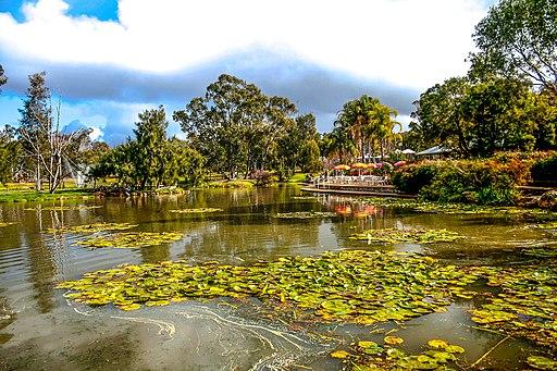 Taronga Western Plains Zoo IMG 0568 (41554329675)