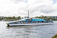 Team Brisbane CityCat wrap (26341261794).jpg