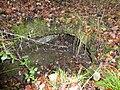 Tervuren Resten Kapucijnenklooster - 232390 - onroerenderfgoed.jpg