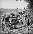 The British Army in Normandy 1944 B7567.jpg