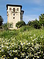 The Pelion Tower.jpg