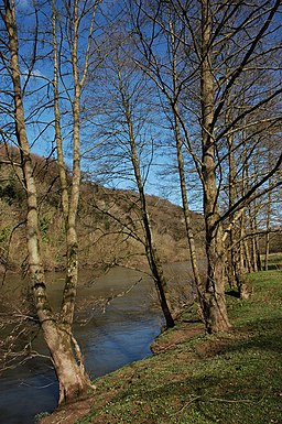 The River Wye near Symonds Yat - geograph.org.uk - 733892