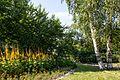 The Tauride Garden - panoramio.jpg