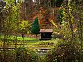 The Tree And The Wooden House - panoramio.jpg
