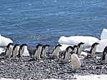 The World Factbook - Antarctica - Flickr - The Central Intelligence Agency (3).jpg