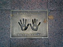 The hands of Sir Ian McKellen.jpg