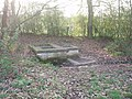 The spring or sand well, Sandwell priory - geograph.org.uk - 636395.jpg