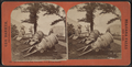 The trophies in the park, West Point, N. Y., Mexican mortars, by Barker, George, 1844-1894.png