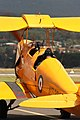 Tiger Moth at Wings over the Illawarra.jpg