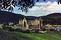 Tintern Abbey - geograph.org.uk - 1099527.jpg