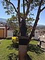 Tiradentes - Tiradentes - MG - panoramio.jpg