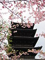 To-ji National Treasure World heritage Kyoto 国宝・世界遺産 東寺 京都168.JPG
