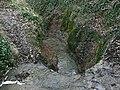 Top Dumble waterfall (3) - geograph.org.uk - 1127298.jpg
