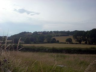 Torberry Hill