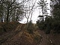 Track leading to Burn's Hill - geograph.org.uk - 1611755.jpg
