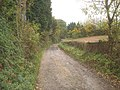 Track leading to Witley Court - 3 - geograph.org.uk - 1138732.jpg