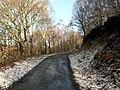 Trans Pennine Trail to Finkle Street Lane - geograph.org.uk - 713852.jpg